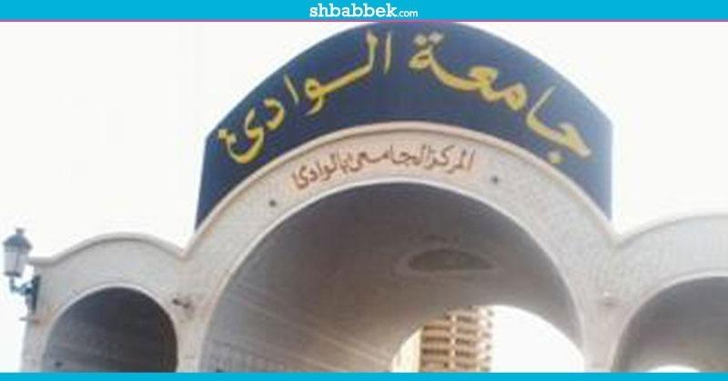 الدكتور عبد العزيز طنطاوي يتسلم مهامه رئيسا لجامعة الوادي الجديد
