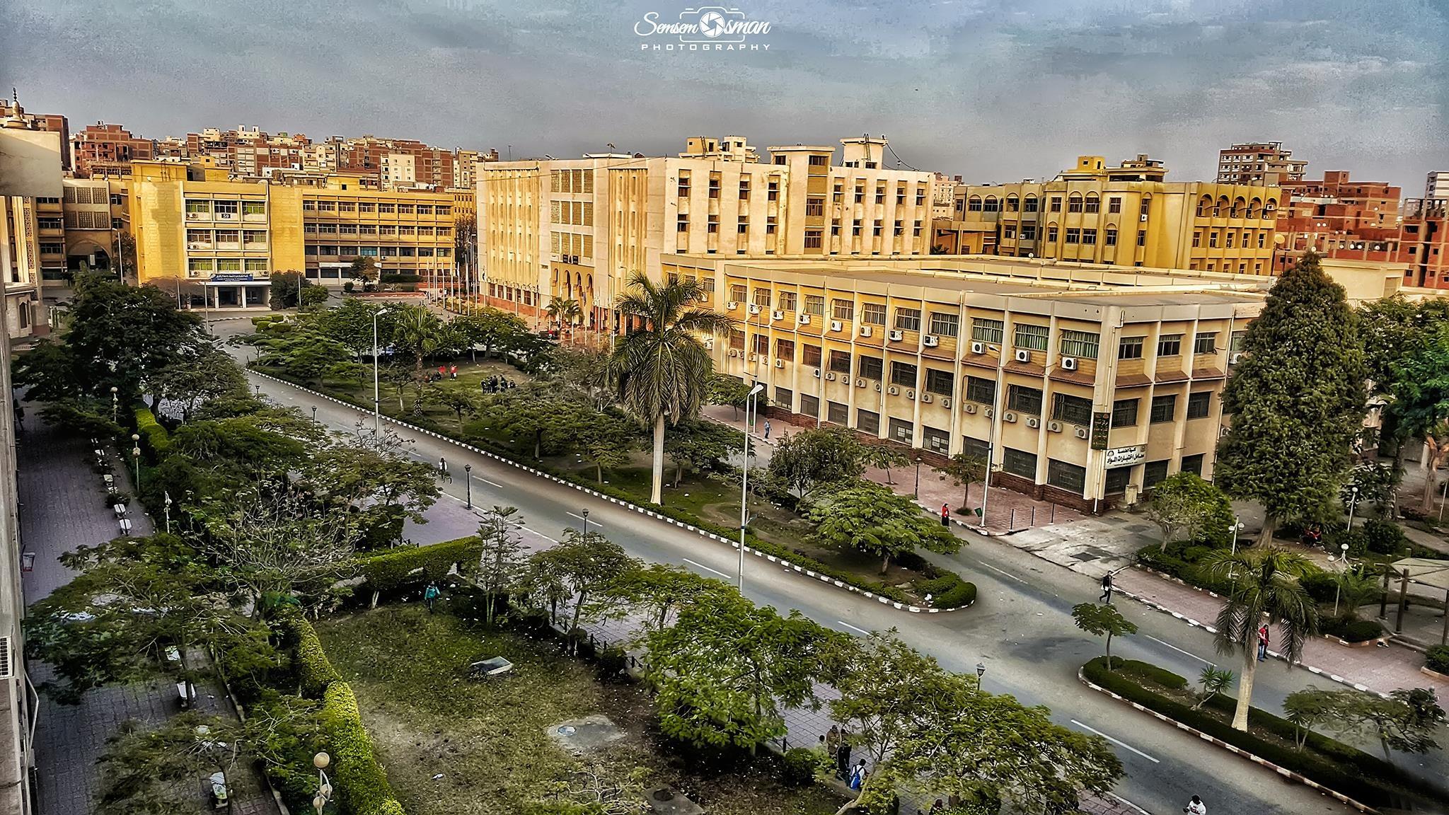 فوز جامعة الزقازيق بالمركز الأول في تنظيم مهرجان «حكاية نصر 45»