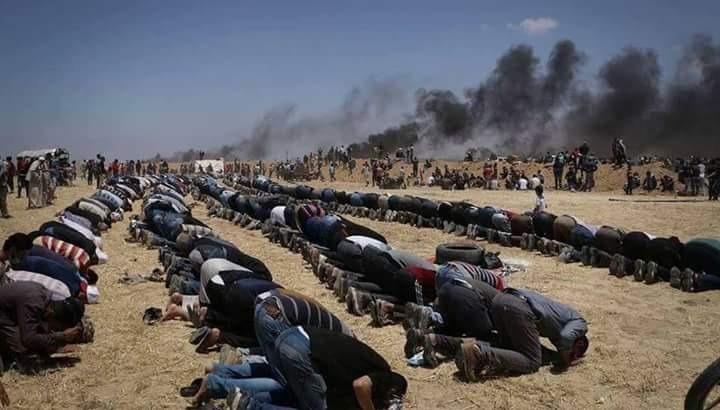 اتحاد طلاب جامعة المنوفية: تخاذل العرب سبب عدوان إسرائيل على فلسطين