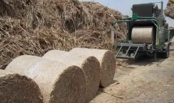 للاستفادة من قش الأرز.. بروتوكول تعاون بين جامعات طنطا وكفر الشيخ والمنوفية