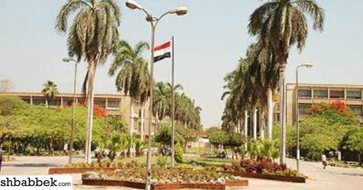 «التكنولوجيا الحيوية».. مسابقة طلابية يشارك فيها 17 جامعة مصرية
