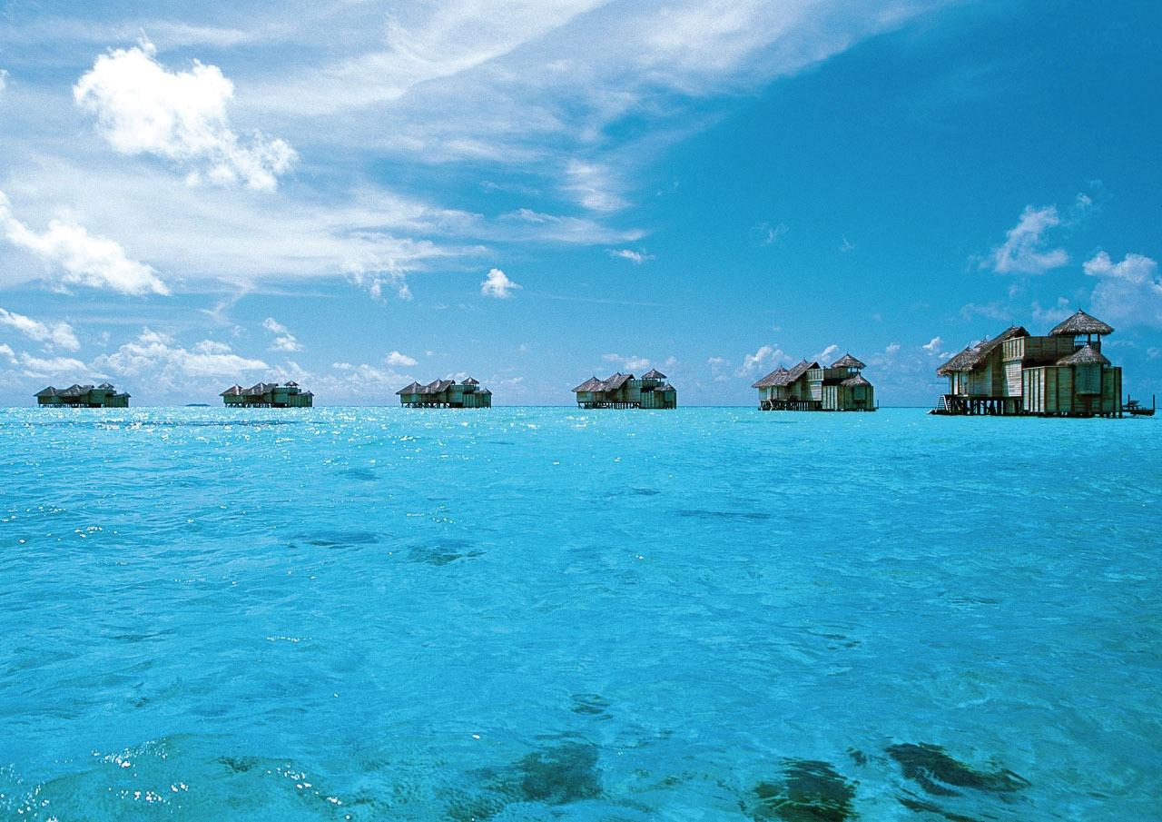 قوة عجيبة.. هذه حكاية ابن بطوطة مع سمك التونة والنساء في المالديف