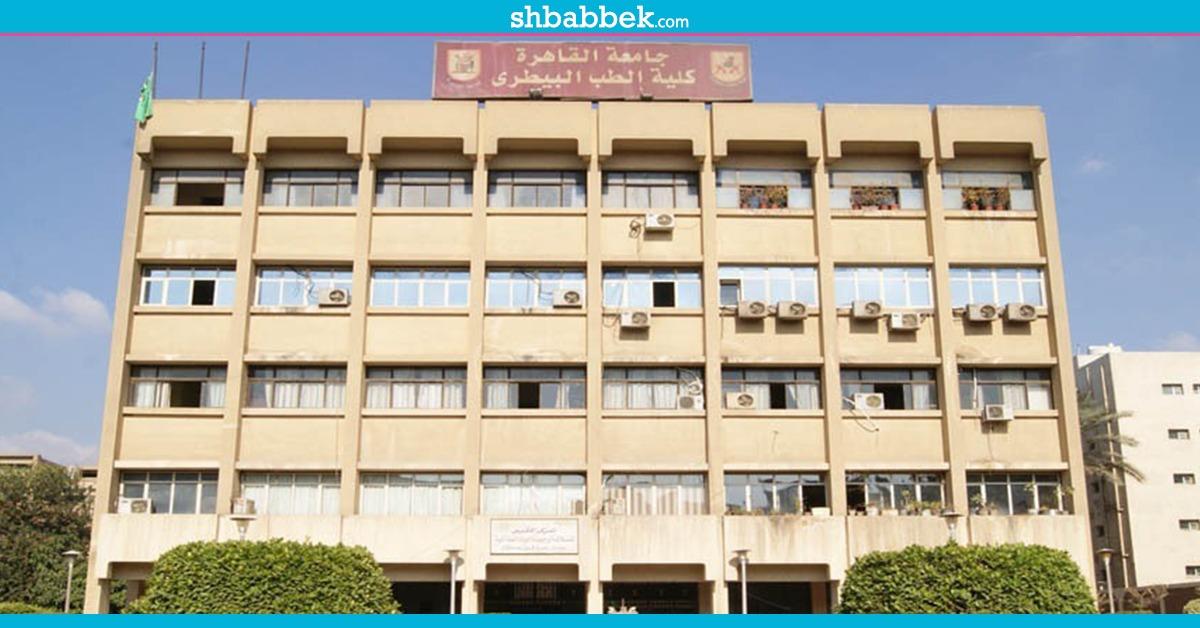 بين العمل التطوعي والرفق بالحيوان.. تنافس الأسر الطلابية في «بيطري القاهرة»