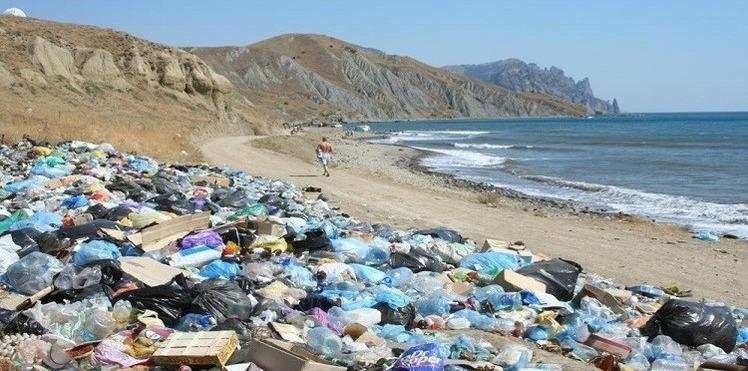 في عام 2050.. القمامة ستصبح أكثر من الكائنات الحية (فيديو)