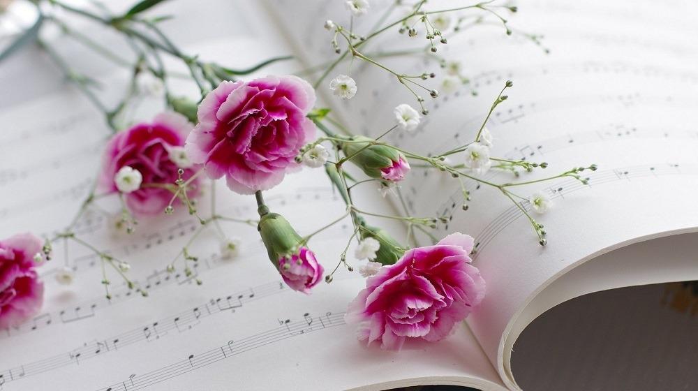 #اصطباحة_النهاردة.. مطربين كبار غنوا لجمال الورد