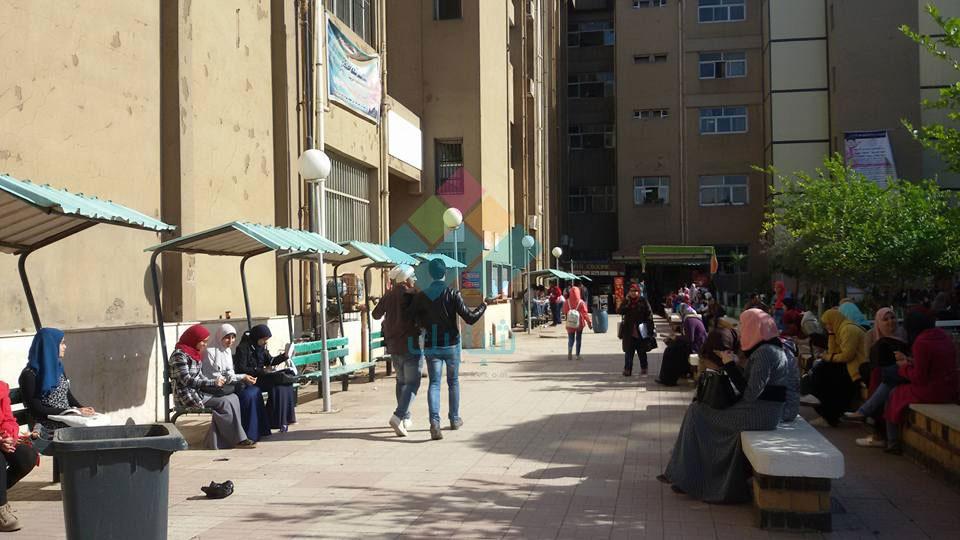 مظاهر الدعاية لانتخابات الاتحاد معدومة.. الهدوء يسيطر على جامعة المنصورة