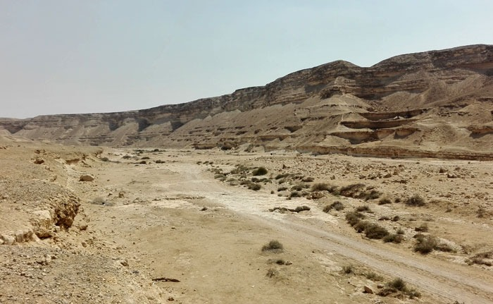 كواليس إنقاذ 21 طالبا فقدوا بالصحراء داخل محمية وادي دجلة