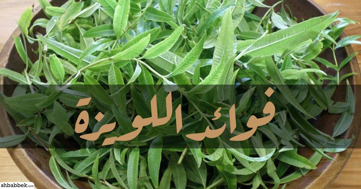 فوائد اللويزة.. 10 فوايد للعشب اللي زي العسل