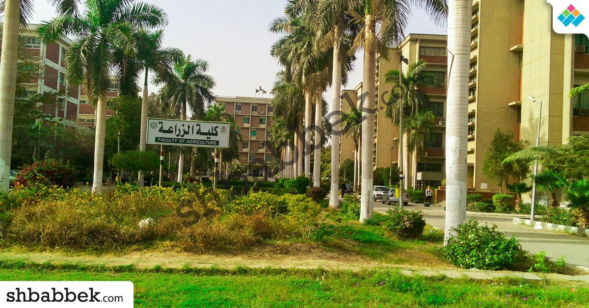 أول كلية بصعيد مصر.. تعرف على تاريخ زراعة أسيوط وأقسامها