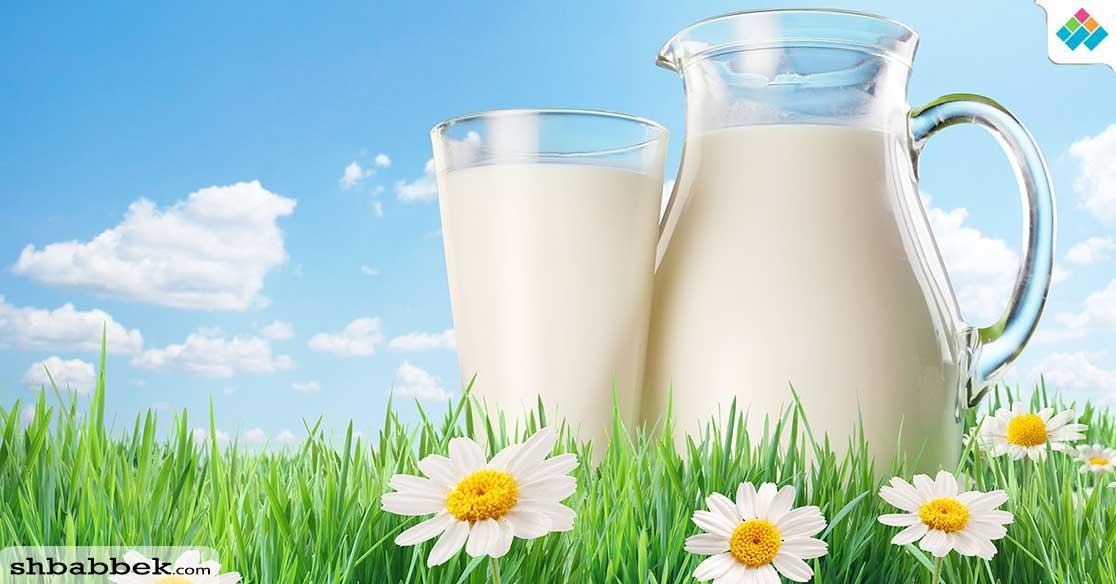 فوائد الحليب.. مشروب الطاقة والعناية بالبشرة