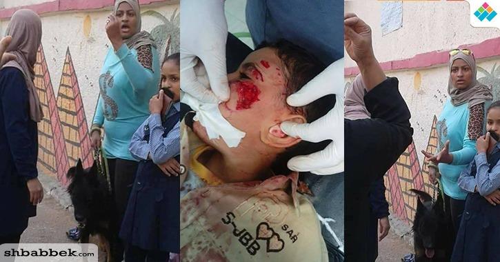 http://shbabbek.com/upload/سيدة تستعين بكلب لمهاجمة طفل بمدرسة في مصر الجديدة (صور)