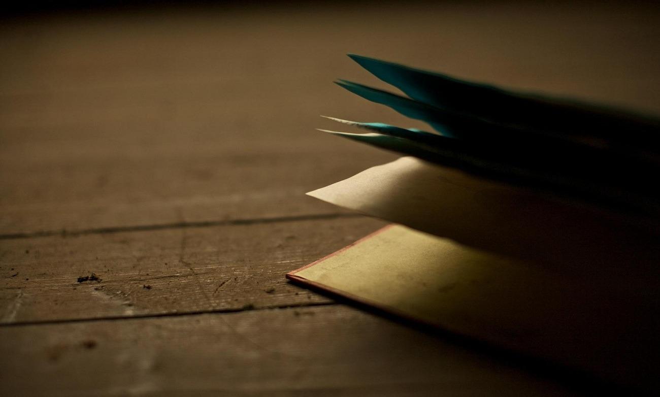 النجاح لا يرتبط بالدراسة.. هؤلاء تركوا التعليم فنبغوا في الأدب