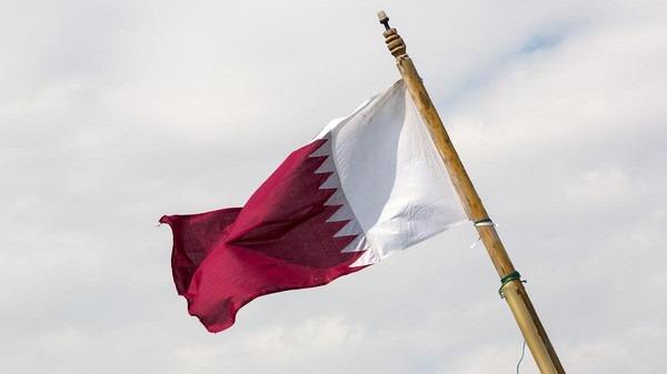 وزارة الهجرة تخصص خطا ساخنا لتلقي شكاوى المصريين في قطر