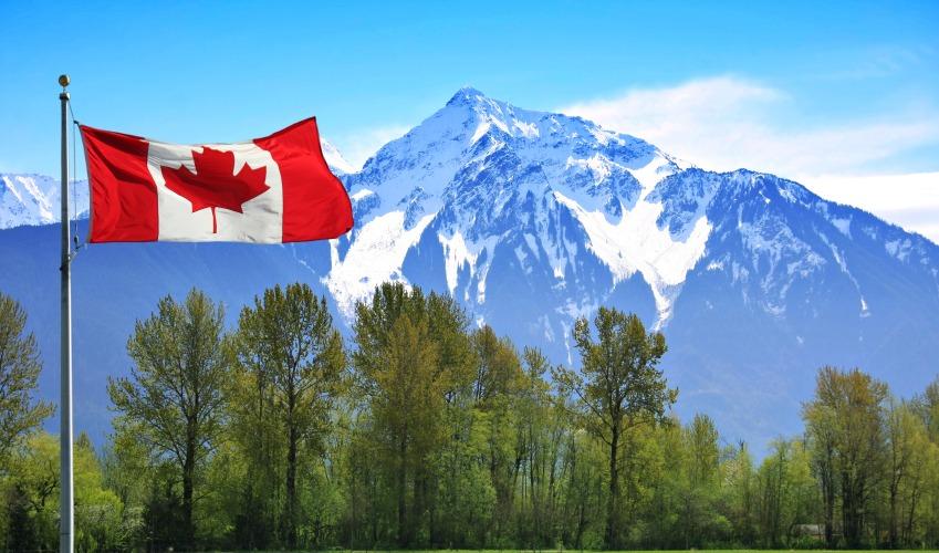 «كندا» تسمح للمصريين باللجوء السياسي.. اعرف الشروط