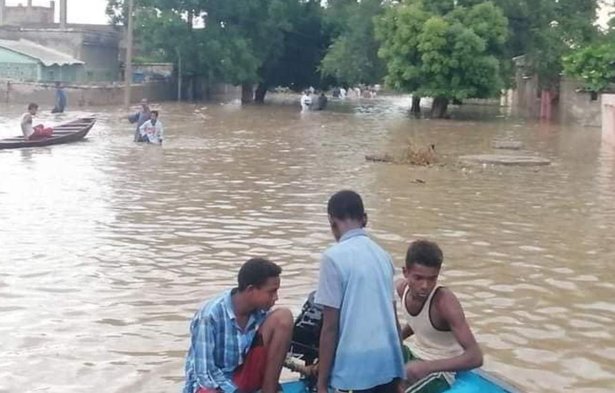 تماسيح وثعابين في الفيضانات في السودان 2020 بالفيديو والصور شبابيك