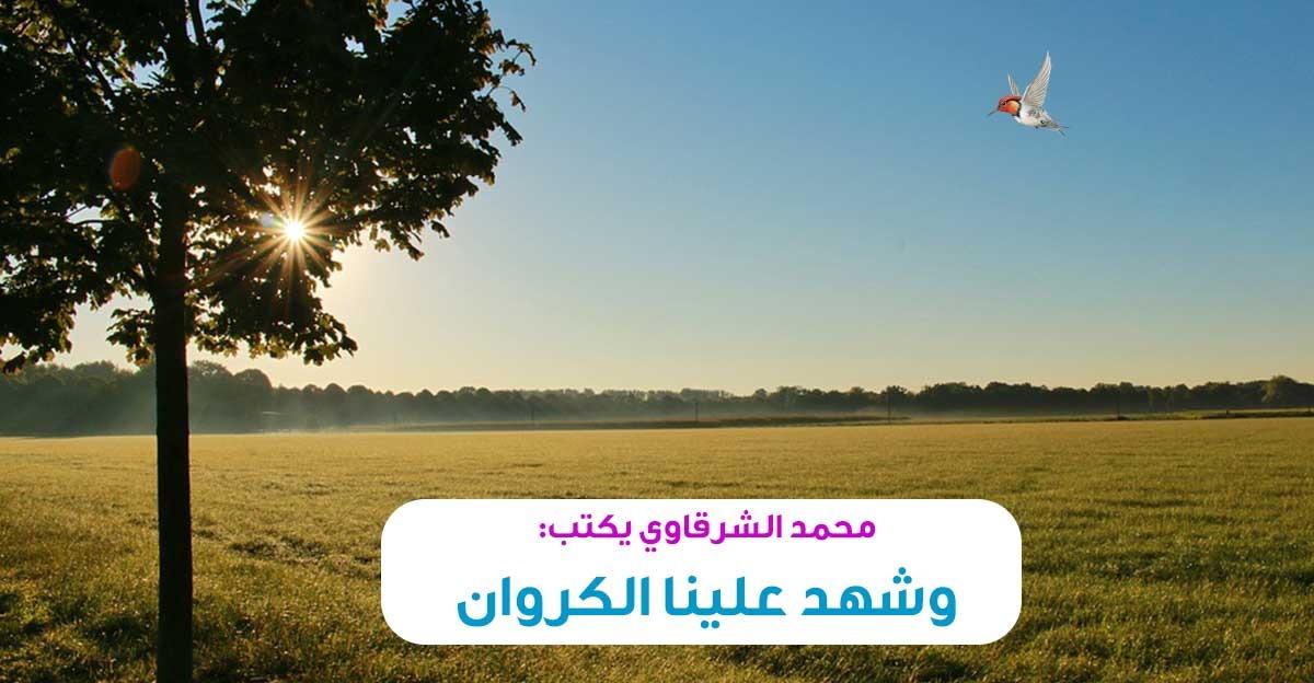 محمد الشرقاوي يكتب: وشهد علينا الكروان