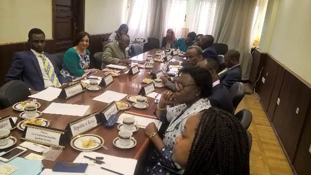 التعليم العالي تبحث سبل التعاون مع الدول الأفريقية