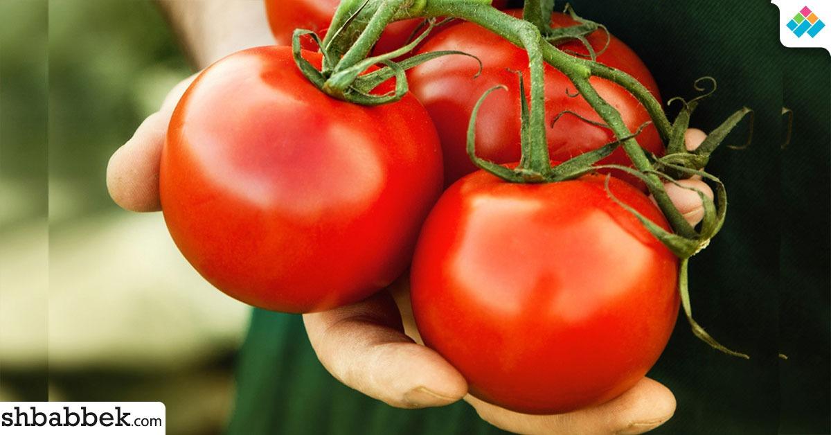 فوائد الطماطم.. 9 أسباب تخليك تاكل قوطة كل يوم