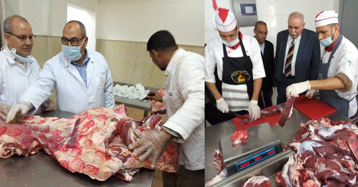 مدينة الأزهر: لجان متختصصة لاستلام السلع الغذائية من الموردين (صور)