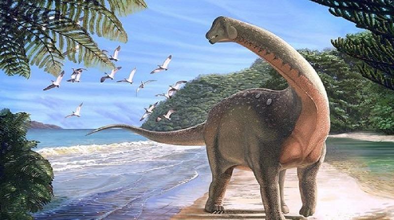 أكبر مجلة علمية بالعالم تنشر كواليس اكتشاف الديناصور المصري (مترجم)