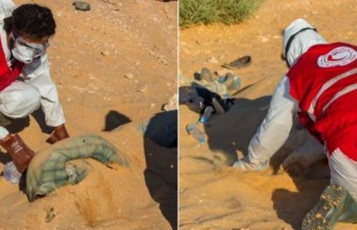 السلطات الليبية تعثر على جثث 19 مصرياً بصحراء طبرق