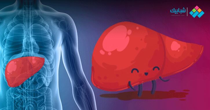 10 معلومات مهمة عن الكبد.. الغدة الأكبر في جسم الإنسان ويتجدد تلقائيا