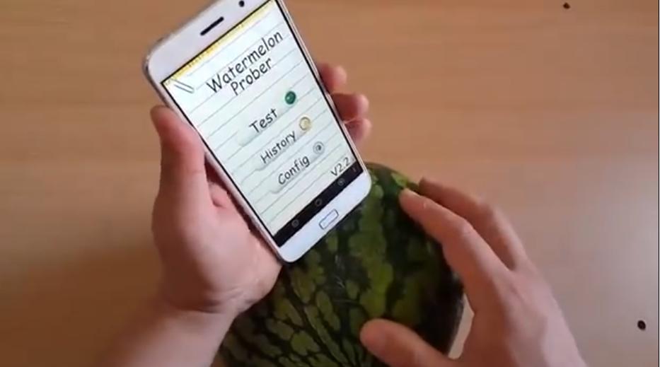 بدل ما تتطلع قرعة.. تطبيق هيساعدك في اختيار البطيخ الحلو