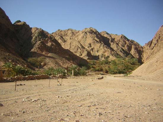 وادي غزالة 1